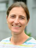 Simone Solerti